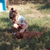 kutya-menhely-gazdit-keres-hajdú-bihar-hajdúszoboszló-kutya-orokbefogadas-2019-szeptember-1